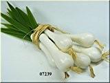 Oignon de printemps Taille, 6oignons à la taille–Simple hohlattr appe pour la décoration en plastique, Alimentaire factice d'injection, imitation alimentaire, ...
