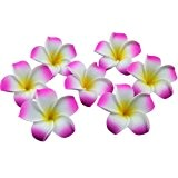 onecreation 4 cm Plumeria hawaïenne frangipanier en mousse flowers-wedding Décoration vacances Home dector DIY (100pcs-pink)