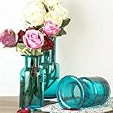 oulux (TM) American Country style cristal transparent Mini Hydroponie Fleur Posy Bouteille Vase en verre table Daisy Bleu Mer, A