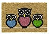 Paillasson d'entrée robuste 100% fibres de Coco naturel dessin Hibou, 40 x 60 cm