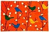 Paillasson fibre coco Oiseau (Orange)