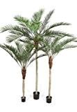 Palmier artificiel Phoenix Palm - plante intérieur - H.180 cm vert - palmierphoenixtaille : 180 cm