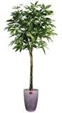 Palmier artificiel, plante artificielle Pachira tressé 180cm - taille : 180 cm
