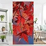 Panneau-rideau Red Maple 250x120cm | support au choix panneau japonais rideau coulissant panneau-rideau séparateur d'espace paravent tableau mural déco décoration ...