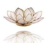 Photophore en forme de fleur de lotus En coquille de Capiz à bord doréCouleur naturelle