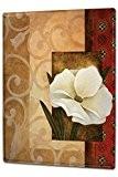 Plaque émaillée Posters Enseignes en métal Panneaux Plaques XXL Plantes Fleur de jasmin