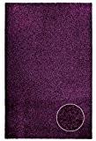 Poil long Tapis Shaggy - coleur violette aubergine - moderne et élégant dimension 60 x 100 cm