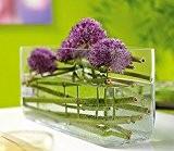 Rectangulaire en verre transparent basse fleur bouquet Vase 30/15/15/10cm