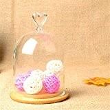 SHINA Creative Verre Paysage Couvercle DIY Vase Décoratif Verre Transparent Pour la décoration à la maison ou le bureau ou ...