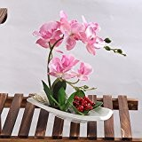 SituMi Orchidée Fleur artificielle Décoration Bonsai Accueil La céramique rose ,Terreau