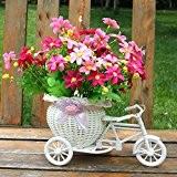 Soledi Plastique Blanc Tricycle Vélo Motif panier de fleurs de conservation pour fleur Plante Maison Fête Wedding Décoration DIY Couleur ...