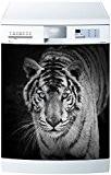 Stickersnews - Magnet lave vaisselle Tigre 60x60cm réf 607