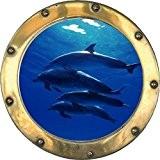 Stickersnews - Sticker Hublot fond marin Dauphins 10 Dimensions - 30x30cm