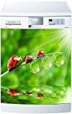 Stickersnews - Sticker lave vaisselle ou magnet lave vaisselle Coccinelles Dimensions - 60x60cm