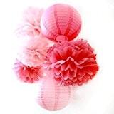SUNBEAUTY Lot de 6 Série Rose Fuchsia Pompon Papier de Soie Lanterne pour Decoration Mariage Anniversaire Saint Valentin