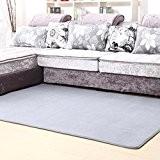 Table basse salon rectangulaire tapis de velours de corail épais moderne simple salon 50 * 120cm,Gris argenté