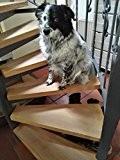 Tapis antidérapant Fein gravé, Lot de 5dans 65cm x 15cm Transparent, pour Lot de 5marchettes d'escalier également pour chien et ...