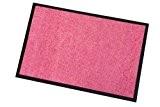 Tapis rose extérieur et intérieur - Tapis absorbant, anti salissures (Rose, 60x90cm)
