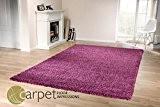 Tara Shaggy Tapis Longues Mèches Violet 160x230 cm
