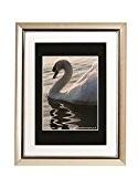 The Photo Album Company PEL1216SIL-MNT Cadre avec passe-partout Argenté 30 cm x 40 cm (Import Royaume Uni)