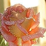 TOOGOO(R)30 * 30cm colle strass Diamant a tableau en motif de fleur DIY kit bricolage en main loisir creatif