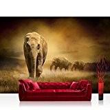 WTD Mantiburi Papier peint en tissu non-tissé 400x 280cm African Savanna by liwwing (R) | Papier peint intissé Papier peint, ...