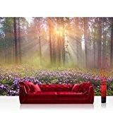 WTD mantiburi papier peint en tissu non-tissé motif forêt naturelle-n ° 239 papier peint à impression photo motif forêt naturelle ...