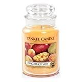Yankee Candle Grande bougie Parfumée Salsa mangue et pêche Grand 1114681