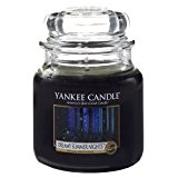 Yankee Candle - Moyenne Jarre Dreamy Summer Nights Yankee Candle