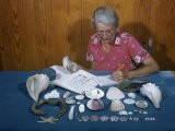 Collector Identifies and Catalogs Her Shells - Jack Fletcher