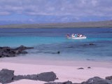 Tourists in Dinghy, Hook Island, Galapagos Islands, Ecuador - Jack Stein Grove