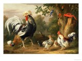 Poultry and Other Birds in the Garden of a Mansion - Jacob Bogdany