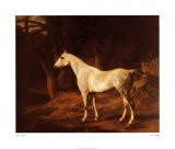 Forest Dapple - Jacques-Laurent Agasse
