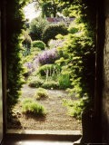 View Through Doorway Framed with Taxus to Country Flower Garden, Northumberland - Jacqui Hurst