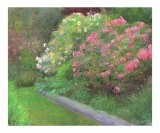 Aisle of Rhododendrons - Jacquie Gouveia