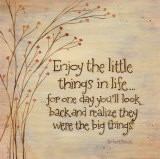 Enjoy The Little Things - Karen Tribett