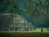 A Monkey Who Lives at the Site Walks Past a Mayan Ruin at Copan - Kenneth Garrett