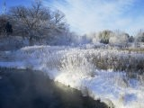 Scuppernong Creek in Winter Snow, Wisconsin, USA - Larry Michael