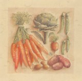 Vegetables IV, Carottes - Laurence David