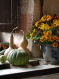Gourds and Flowers in Kitchen in Chateau de Cormatin, Burgundy, France - Lisa S. Engelbrecht