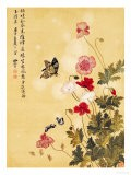 Corn Poppy and Butterflies, 1702 - Ma Yuanyu
