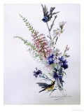 Study of Heather Cornflower and Blossom - Madeleine Lemaire