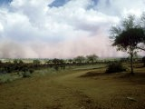 Dust Storm Approaching at Lion Hill, Kenya - Malcolm Coe