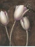 Luminous Tulips - Mandy Boursicot