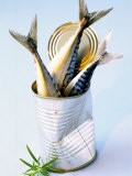 Three Fish (Mackerel) in a Tin - Marc O. Finley