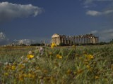 Ancient Roman Columned Ruins in Sicily, Italy - Marcia Kebbon