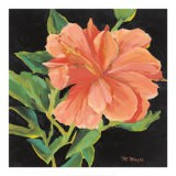 Orange Flower - Margaret Magee