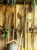 Garden Tools Hanging in Shed Fork, Shears, Rake, Lopper, Axe, Saw & Gardening Gloves - Martine Mouchy