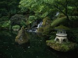 Water Cascades into a Pool at the Japanese Garden - Nadia M. B. Hughes