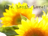 Live Laugh Love: Sunflower - Nicole Katano